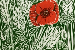 Poppy II: limited edition two-plate linocut. Edition of 16, image measures 12 x 12cm
