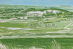 Walking in West Sussex: limited edition reduction linocut. Edition of 12, image measures 40 x 13cm